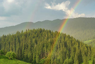 Unicorn Dust - Double Rainbow - Looking for the Pot of Gold Among the Pine Trees by Georgia Mizuleva