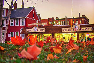 Fall Animals - Downtown Nashua, NH by Joann Vitali