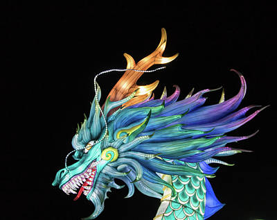 Fantasy Royalty-Free and Rights-Managed Images - Dragon by Martin Newman