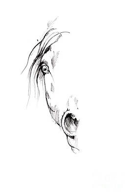 Animals Drawings - Drawing of a horse 2017 02 04 by Angel Ciesniarska