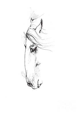 Animals Drawings - Drawing of a horse 2017 02 07 by Angel Ciesniarska