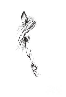 Animals Drawings - Drawing of a horse 2017 02 09 by Angel Ciesniarska