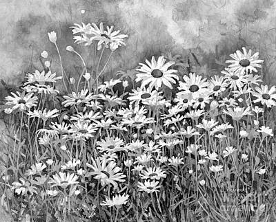 From The Kitchen - Dreaming Daisies in Black and White by Hailey E Herrera