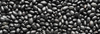 Holiday Pillows 2019 - Dry Black Beans Panorama by Steve Gadomski