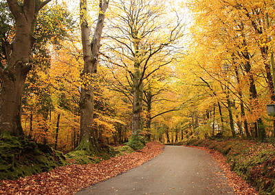 Photograph - Dunkery Beacon in Autumn by Mike Finding