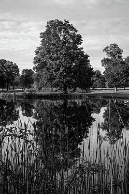 Landscapes Royalty-Free and Rights-Managed Images - duplicate - BW by Steve Bell