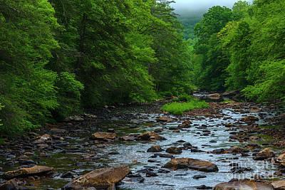 Sara Habecker Folk Print - Early Morning Cranberry River by Thomas R Fletcher