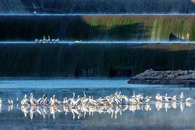 Clouds Rights Managed Images - Early Morning Gathering At the Spillway Royalty-Free Image by Debra Martz