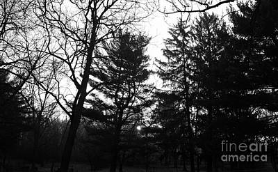 Frank J Casella Royalty-Free and Rights-Managed Images - Early Spring Sunrise Fog - Black and White by Frank J Casella