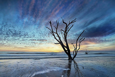 Holiday Pillows 2019 - Edisto Morning by Jon Glaser