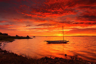 Photograph - Electrified Sunrise by Dapixara Art