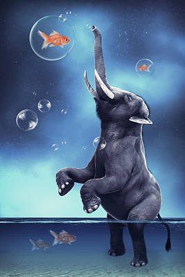 Animals Digital Art - Elephant playing with fishes by Mihaela Pater