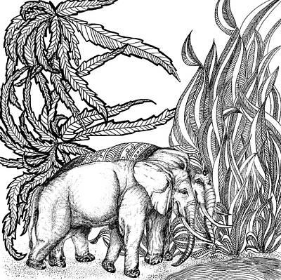 Animals Drawings - Elephants by Jennifer Wheatley Wolf