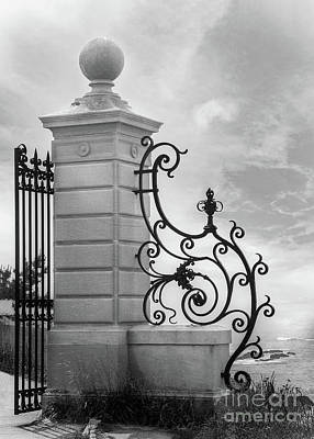 Wild Horse Paintings - Entrance Gate - Monochrome by Anthony Ellis
