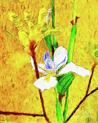 Lake Life - Exotic Flowers Impression by Jerome Stumphauzer