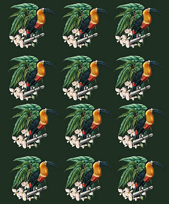 Queen Rights Managed Images - Exotic Jungle Design Toucan Royalty-Free Image by Johanna Hurmerinta