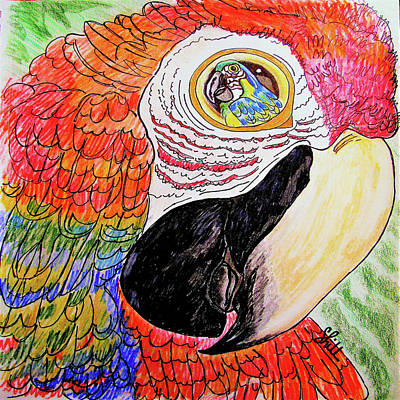 Animals Drawings - Eye See You Mr.Bird by Sharon Hill