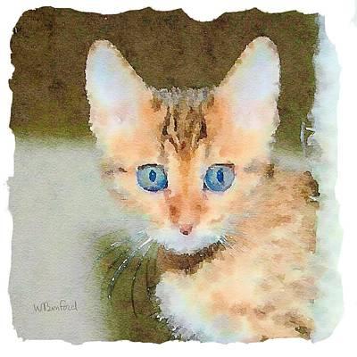 Animal Watercolors Juan Bosco - Eyes by Wade Binford