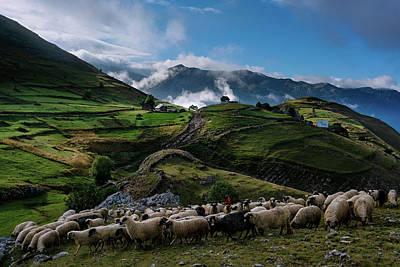 Photograph - Fairy tale village by Bez Dan