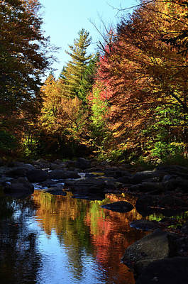 Lucille Ball - Fall Reflect I - New York  by Patrick O