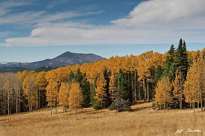 Photograph - Fall Colored Aspens on Hart Prairie by Jeff Goulden