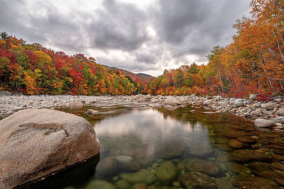 Photograph - Fall Foliage on the East Branch Pemigewasset River I by William Dickman