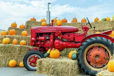 Rusty Trucks -  Fall harvest festival  by Viktor Birkus