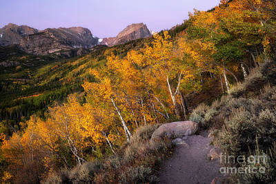 Old Masters - Fall Morning in Rocky Mountain national Park by Ronda Kimbrow