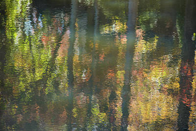 Pittsburgh According To Ron Magnes - Fall Reflections 2 by Mary Ann Artz