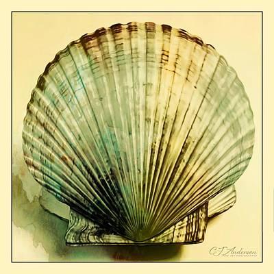 The Beatles - Fan Shell In Lomo by CJ Anderson
