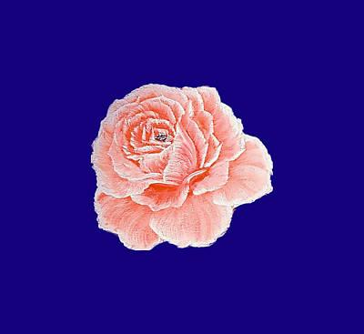 Pop Art Rights Managed Images - Fancy single orange rose on deep blue Royalty-Free Image by Angela Whitehouse