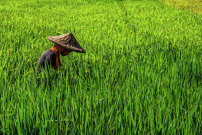All You Need Is Love - Farmer in Sultan Kudarat by Arj Munoz