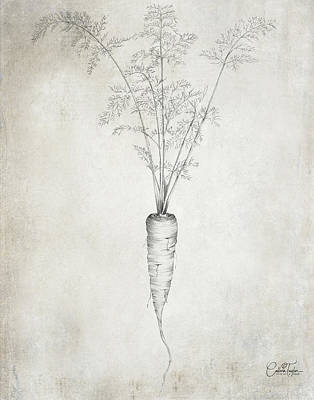 Lovely Lavender - Farmhouse Carrot by Colleen Taylor