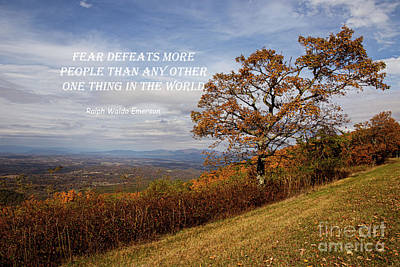 Design Turnpike Books - Fear Defeats by Norma Brandsberg