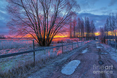 Whats Your Sign - February morning by Veikko Suikkanen
