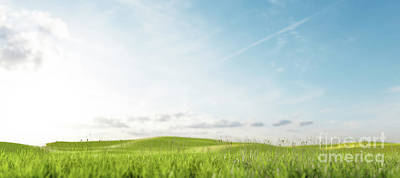 Whimsically Poetic Photographs Rights Managed Images - Field with green grass. Staycations concept. Royalty-Free Image by Michal Bednarek