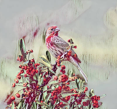 Mixed Media Royalty Free Images - Finch on Red Berry Bush 1 in Cranberry Abstract  Royalty-Free Image by Linda Brody