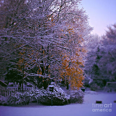 Frank J Casella Royalty-Free and Rights-Managed Images - First Snow After Autumn - Square by Frank J Casella
