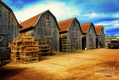 Animals Royalty-Free and Rights-Managed Images - Fish Huts Montague Wharf by Robert Alsop