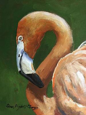 Recently Sold - Susan Elizabeth Jones Royalty-Free and Rights-Managed Images - Flamingo by Susan Elizabeth Jones