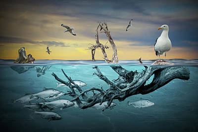 Classical Masterpiece Still Life Paintings - Floating Driftwood with Gulls and School of Fish by Randall Nyhof
