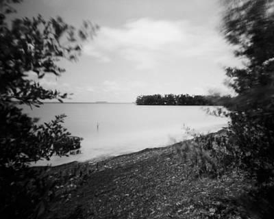 Animal Portraits - Florida Bay at Flamingo Point-2 by Rudy Umans