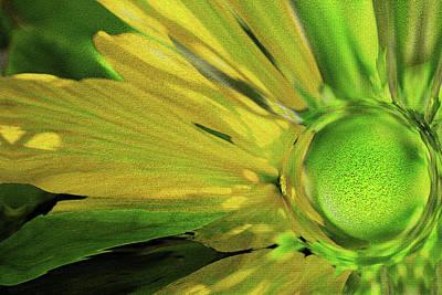 Graduation Sayings - Flower Art by Debra Kewley