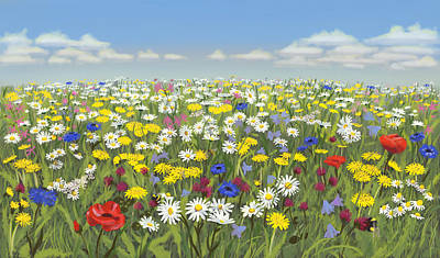 Painting - Flower meadow by Constanza Weiss