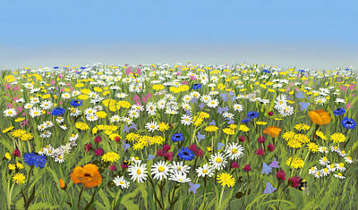 Painting - Flower meadow under blue sky by Constanza Weiss