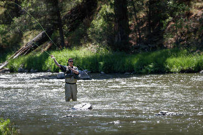 Beaches And Waves Rights Managed Images - Fly fishing in the Crooked River Royalty-Free Image by Murray Rudd