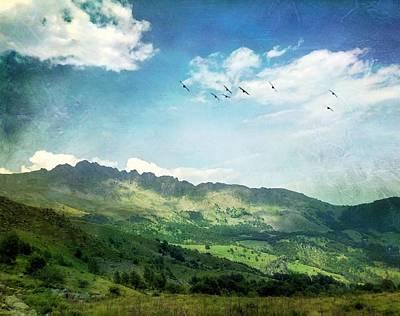 Photograph - Flying on the italian mountain by Cosmina Lefanto