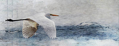 Royalty-Free and Rights-Managed Images - Flying White Crane by Rebecca Cozart