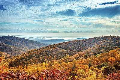 Photograph - Foggy Autumn Morning at Shenandoah National Park by Gestalt Imagery