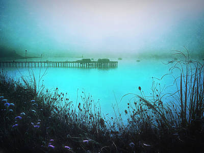 Crazy Cartoon Creatures - Foggy Capitola Morning by Christina Ford